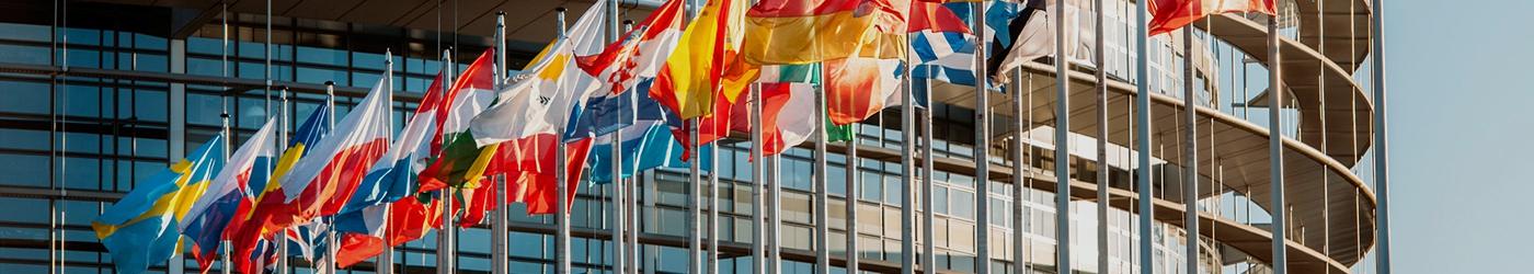Customised  Flags