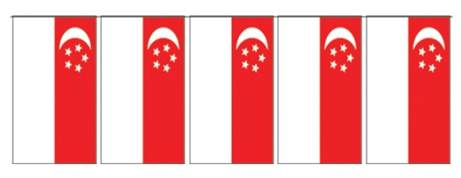 Singapore Cloth Pennants NH8S